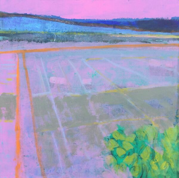 View from above landscape vivid colours pinks blues greens orange stripe high view
