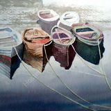 Row boats tied up