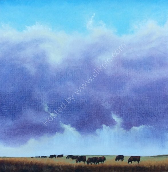 Bulls grazing under the clouds
