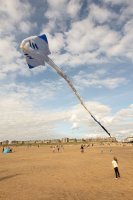2nd Place PDI Giant kite by Fiona Pendlebury