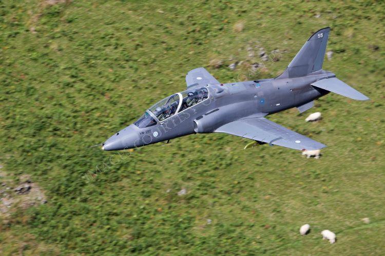 Finnish Airforce Hawk