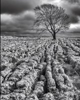 Storm Clouds Gathering; 1st in A section prints; by Mick McCabe