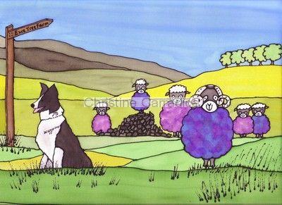 'Behind Ewe!'