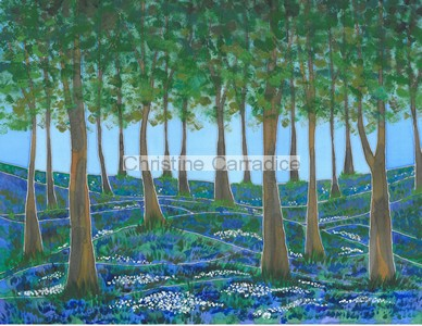"Bluebell Woods at Cleatop, near Settle. Picture size 16"" x 12"" (approx)."