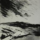 Dartmoor Tracks X