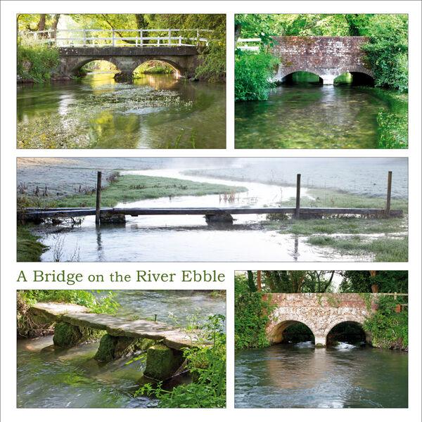 A Bridge on the River Ebble (1)