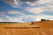 August - Great Wishford