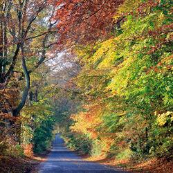 Bishopstone Road, Wilton