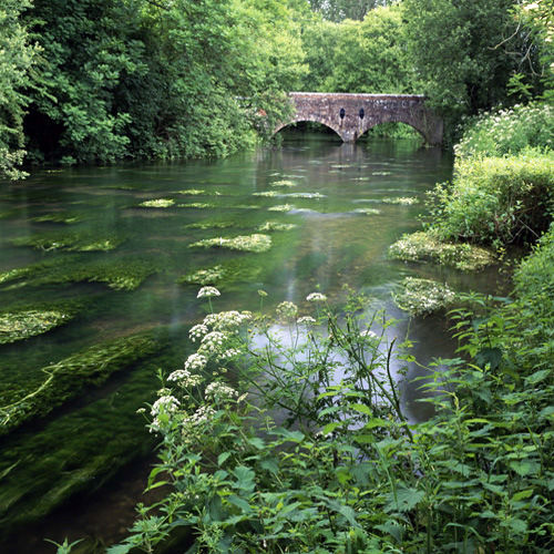 The River Wylye, Boyton Bridge
