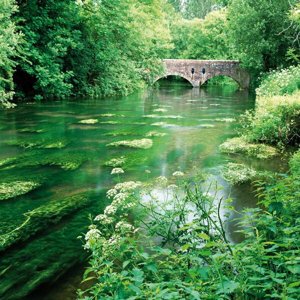 The River Wylye, Boyton Bridge