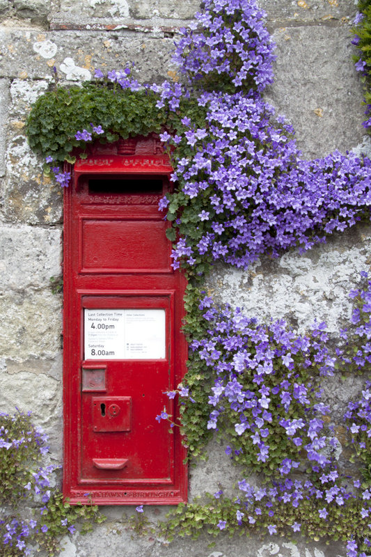 Post Box and Aubretia