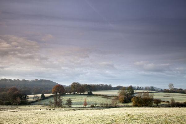 Frost, Sutton Mandeville