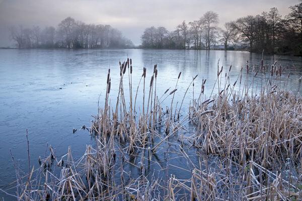 The Lake at Wardour Castle
