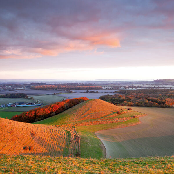Early morning light, Cley Hill, Warminster Wiltshire.
