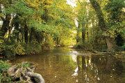 November - Heytesbury