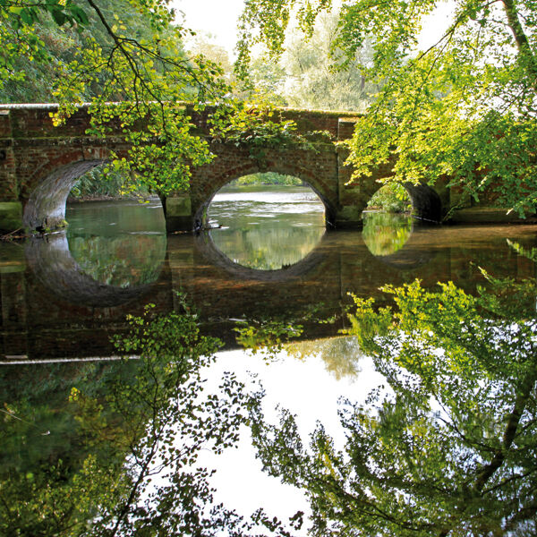 The River Avon at Netton in the Woodford Valley, Wiltshire.