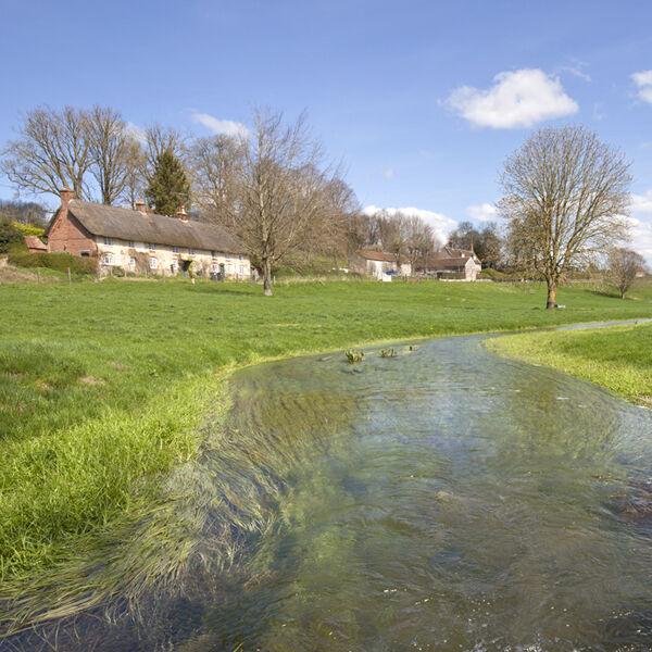 The River Ebble, Fifield Bavant