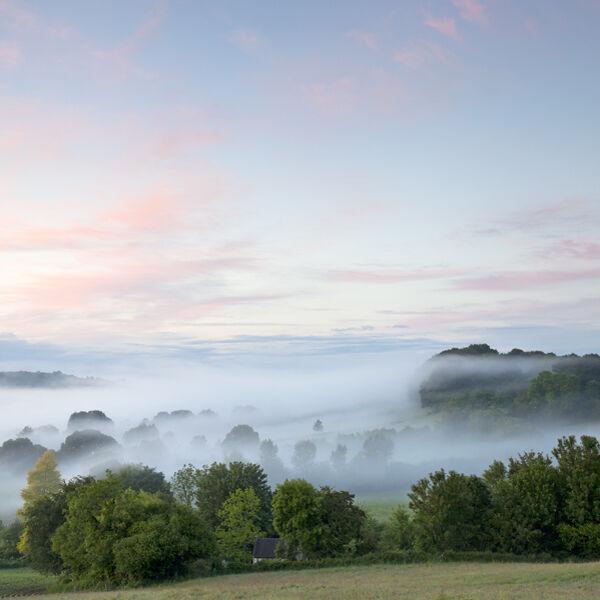 Evening mist at Sutton Mandeville