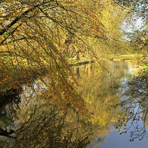 The River Avon at Netton in the Woodford Valley
