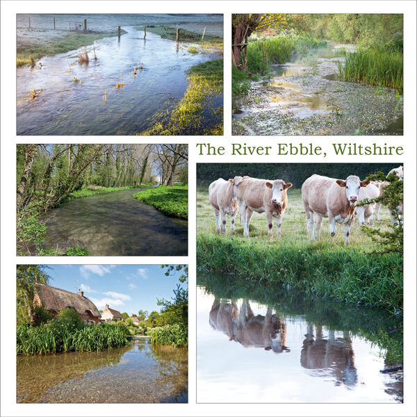 The River Ebble, Wiltshire