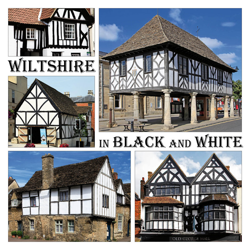 Wiltshire in Black and White