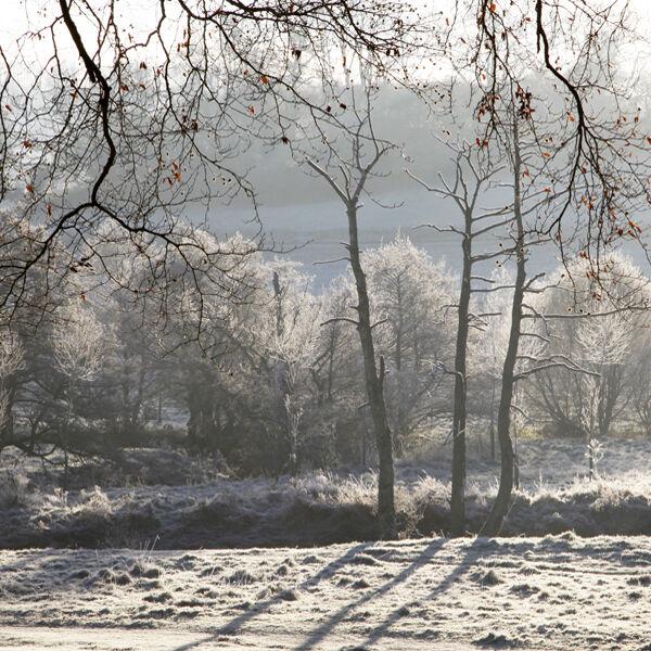 Winter sunlight, Tisbury, Wiltshire