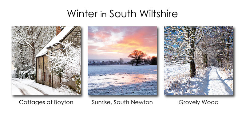 Winter in South Wiltshire 1