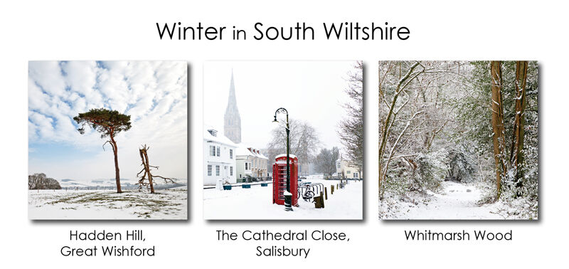 Winter in South Wiltshire 2