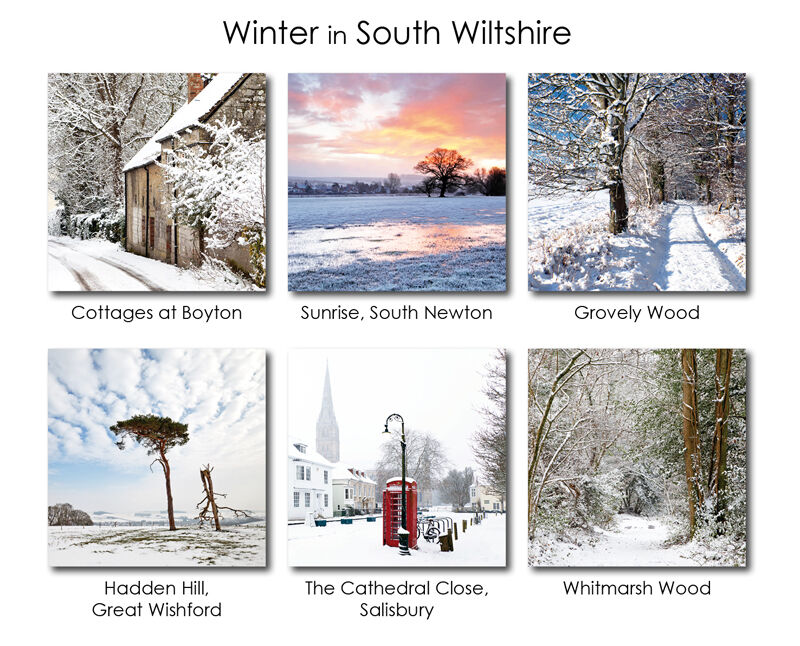 Winter in South Wiltshire 3