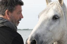 Camargue White Horses (4 of 15)