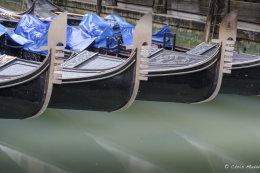 Venice (5 of 11)