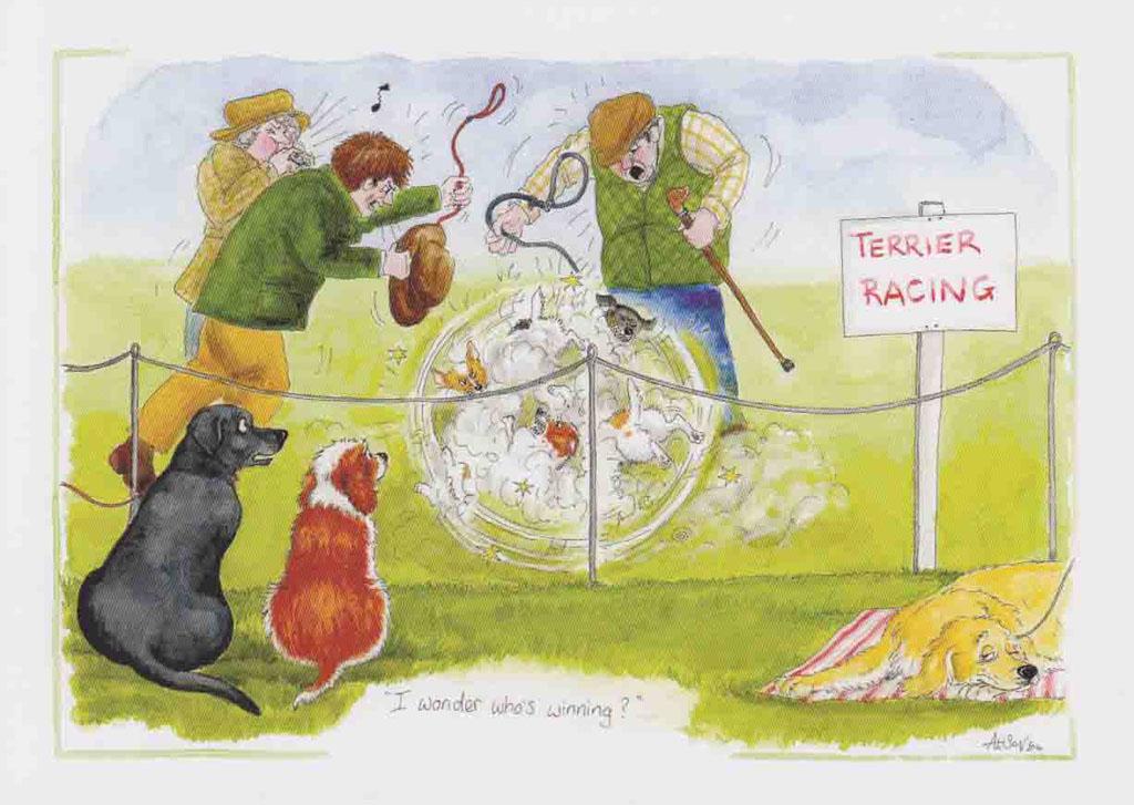 D145 - Terrier Racing