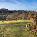 Seat overlooking Downs Banks
