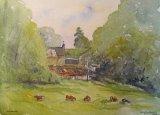 Farm near Waterford
