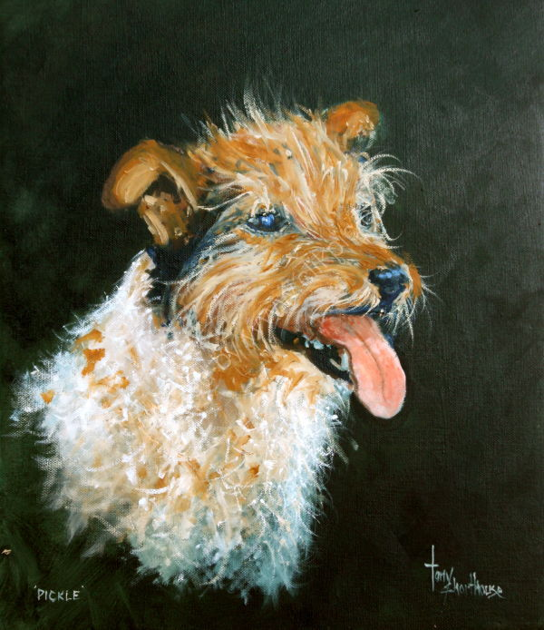 Pickle (Jack Russell)