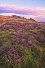 Preseli Hills, Pembrokeshire, Wales, UK.