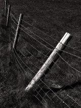 Broken fence, Dorset coast, Dorset, England