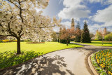 Cathays Park, Cardiff City, Wales.