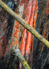 Dalt Quarry, Lake District, England.