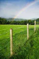 Farmfield, Moel Siabod and rainbow, Snowdonia, Wales