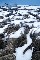 Clints, grykes and crows, Malham, North Yorkshire, UK