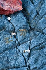 Mewslade Rock, Gower, Wales.