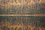 Symmetry, Snowdonia, Wales.