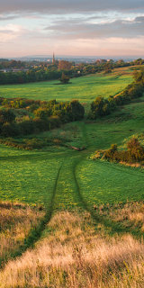 Fields, England.
