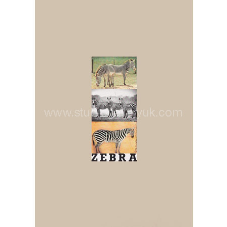 'Z is for Zebra'