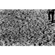 'Footprints in the Sand' (PIC041)