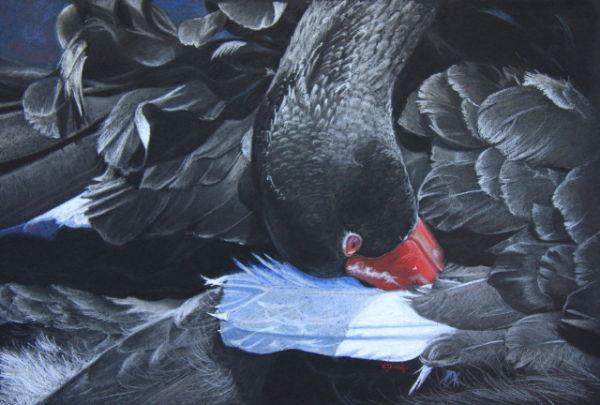 'Dressed in Black' Black Swan