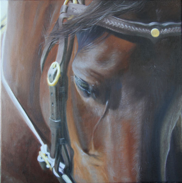 'Horse Power'