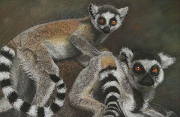 'Lemur Games'