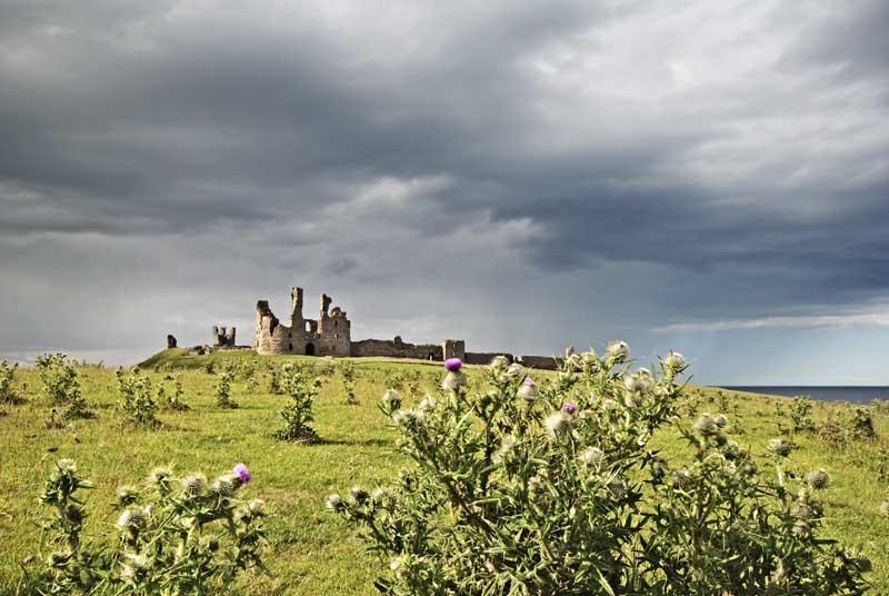 Dunstanburgh castle0045